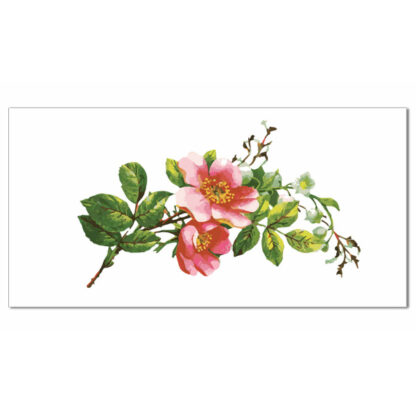 Pink blossom with green leaves on a white rectangular background, ceramic border wall tile