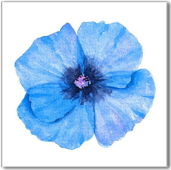 Blue tiles - blue poppy on a white background ceramic wall tile