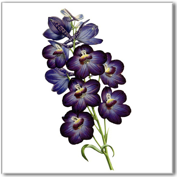 Blue Tiles - Violet flower ceramic wall tile