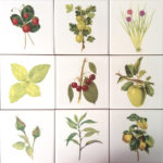 Kitchen Tiles Ideas - 21 Fruit, Berries, Herbs and Flower Tiles Ideas