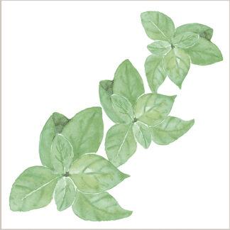 Basil Leaves Ceramic Wall Tile