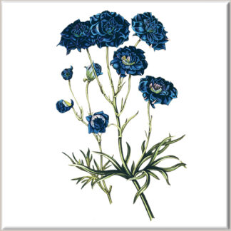 Dark Blue Cornflower Ceramic Wall Tile