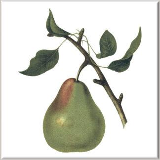 Large Pear Fruit Ceramic Wall Tile