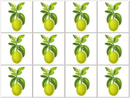 Lemon Fruit and Flowers Ceramic Wall Tile