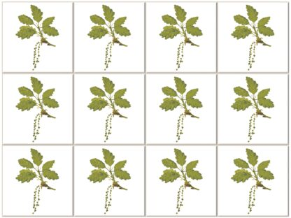Oak Leaves and Catkins Ceramic Wall Tile