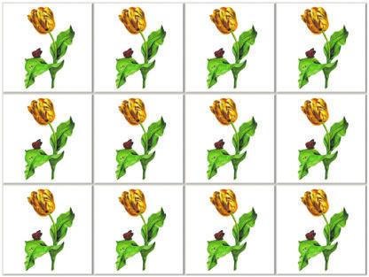 Variegated Golden Tulip Flower Ceramic Wall Tile